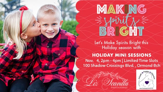 2018 Holiday Mini Sessions Fundraiser Benefitting Hush Puppy Haven